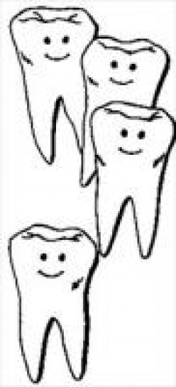 Vocational Dental Practitioner Job Description