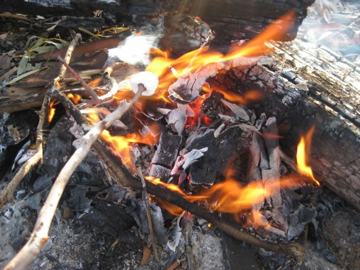 Marshmallows on the fire in winter