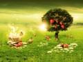 A Look into Quiet Garden of Eden (poem)