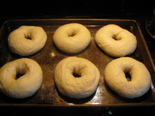 Bagels on prepared pan, after being boiled, and ready for baking