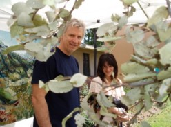 John Quigley and a fellow Arcadia Woodlands treesitter.