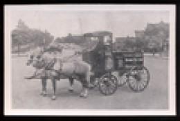 Bromseltzewagon  a peddler's wagon