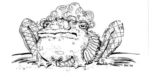 Hooker Frog