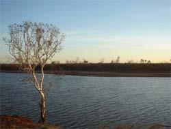 Spot for Mud crabbing