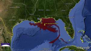 BP Horizon Oil Spill
