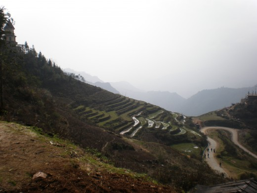 Rice Terraces surrounding Sapa, mountainous region of North Vietnam.