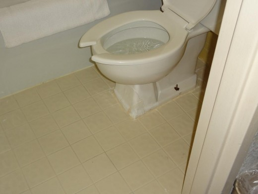 Large crack in toilet