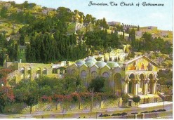 Church of Gethsemane. World wide Christians generosity contributed to the erection of this church; hence its modern name - Church of all Nations. Where Jesus & his disciples concealed themselves before being led prisoner from the garden to Jerusalem