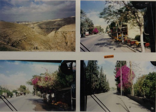 This is Jericho, drive to the green desert oasis of Jericho, Israel
