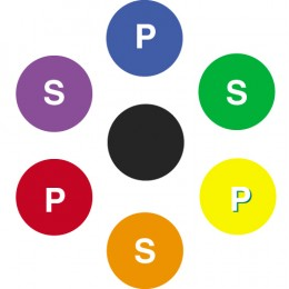 Figure 2 - P=Primary Color; S=Secondary Color