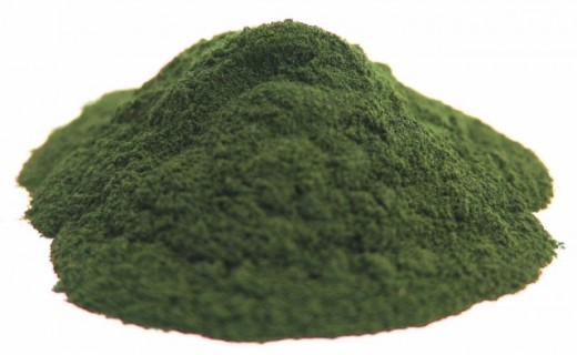 Chlorella in powder form