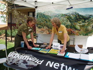 Aim for an effective, attractive table display. For this event we were protesting the illegal clearcutting of native trees by a public agency.