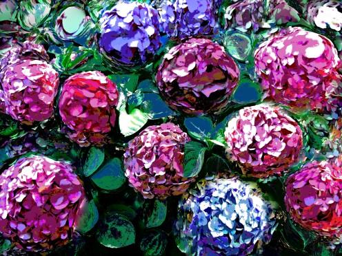 Artsylvia flora 11