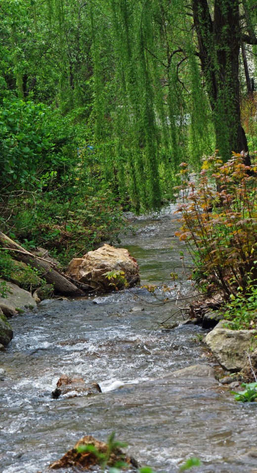 An idyllic creek that flows majestically right through town near the Appalachian Trail.