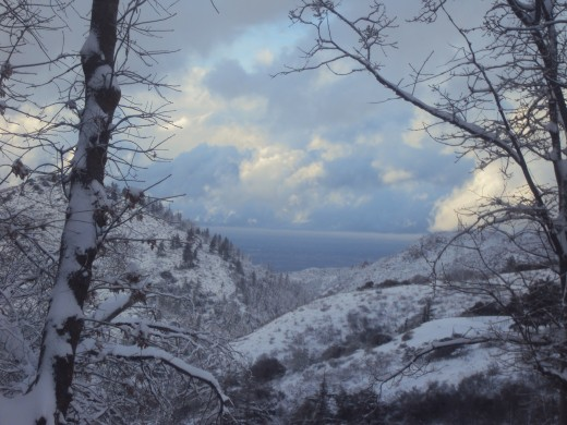 A beautiful picture of Hesperia, which was taken up here in Lake Arrowhead.