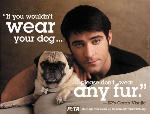 PETA Campaign featuring ERs Goran Visnjic (Courtesy of zendette.com)