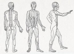 Acupuncture of meridians of Chi Life Force