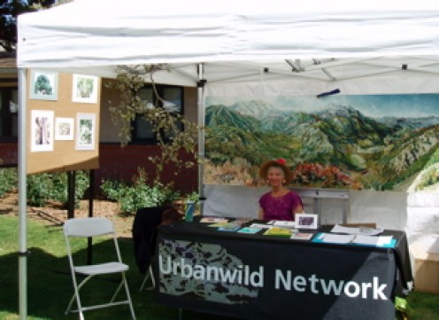This canopy was used at a local  city Earth & Arts Day Festival. The display was about the value of trees. We put up photographs and a painting, and hung a tree branch from the canopy frame.