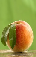 Peachy Green: 10 Tips for Going Green the Easy Way
