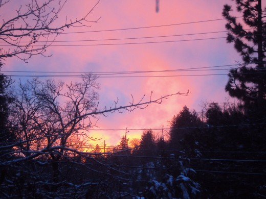 Pink and purple colors seen in the sky at sunrise.