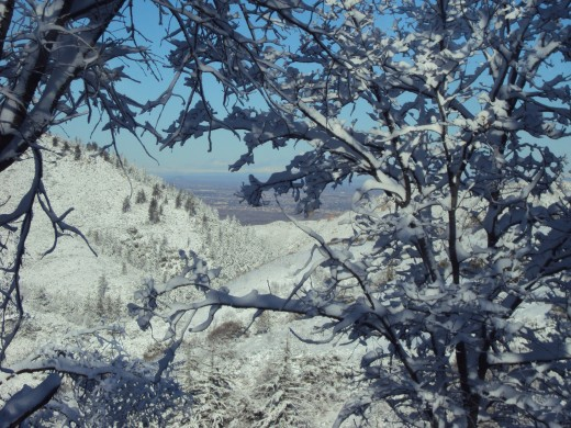 The view of Hesperia after a snow storm.
