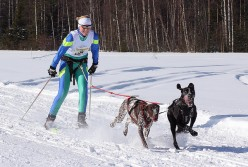 Dog Sports And Dog Running: Skijoring, Bikejoring And Dog Scootering