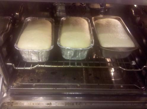 Healthy white bread recipe