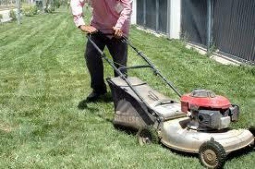 Cutting Grass Counts