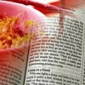 The Manna of God-Spiritual food that gives life-heavenly manna-bread of life