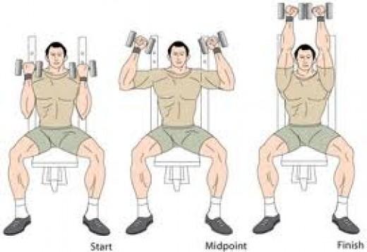 The Arnold press.