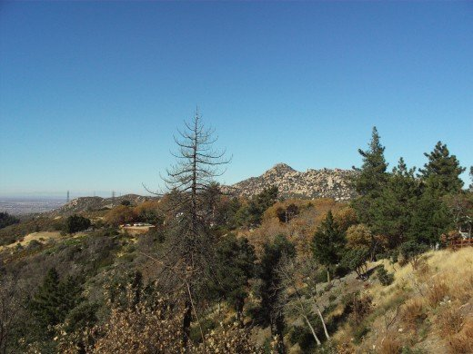 The Pinnacles in the distance are one of the many scenic delights of the San Bernardino Mountains.