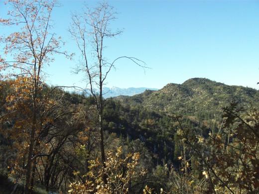 A beautiful day in the San Bernardino Mountains.