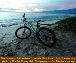 My mountain bike with the scenery of Abasi beach just outside Manokwari city early in the morning