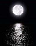Moonlight Photography