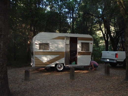 Camping in the Dalton at Henry Cowell State Park