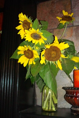 Enjoy fresh Cut Flowers all Summer when you grow your own flowers from seed