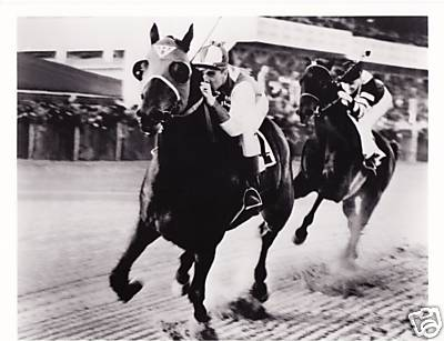 Seabiscuit v. War Admiral