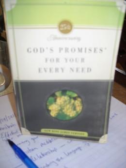 Book of God's promises, broken down in categories.