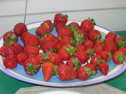Fresh strawberries with spinach make a great summer salad Hub #17 of 30