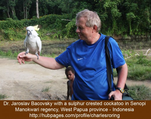 Dr. Jaroslav Bacovsky with a sulphur crested cockatoo resting on his hand