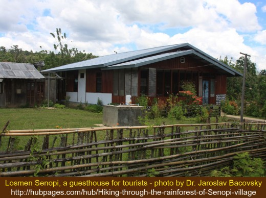 Losmen Senopi is the most recommended accommodation for tourists who want to visit Senopi village in New Guinea island of Indonesia