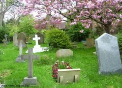 Photographs of an English Country Churchyard