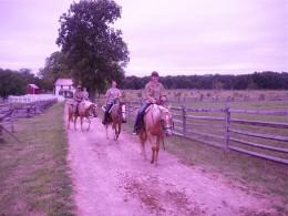 A snapshot of a horseback tour.