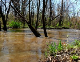 Flood water from Deep River, Hobart Indiana