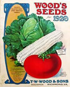 free cross stitch pattern Wood Seed Catalog