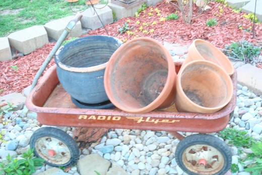 Add interest to the display by turning terra cotta pots on angle in a wagon, so plants trail down the sides