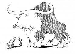 Sore-Gum Steer
