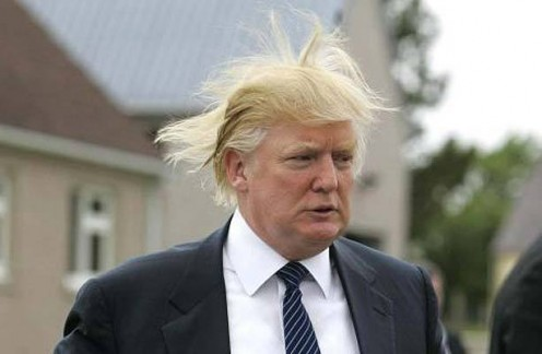 Donald, Donald, Donald...don't be such a barbermonger...let someone cut that hair!!!  Or, just take it off, whichever is accurate.