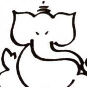 rmshdc profile image