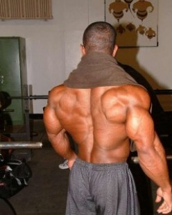 Build Massive Upper Back Fast